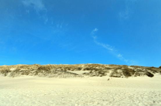 Duinzicht panorama